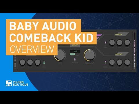 Comeback Kid by Baby Audio | Analog Flavour Delay VST Plugin | Tutorial & Review of Main Features