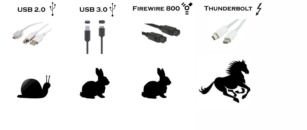 Main Differences Between USB, FireWire & Thunderbolt (Which Is Best?) | Integraudio.com